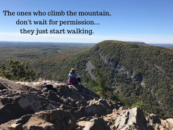 the-ones-who-climb-the-mountain-dont-wait-for-permission-they-just-start-walking-1
